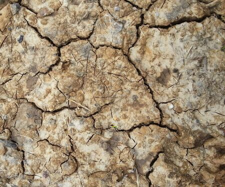 Cracked earth close up Stock Photo - 17854665