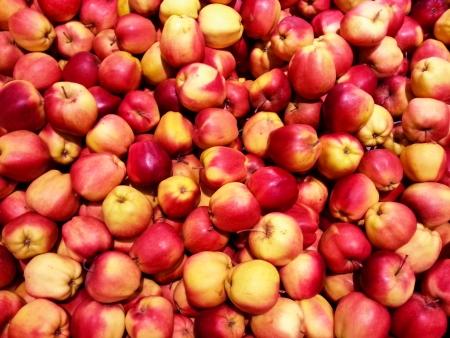 Apple background photo