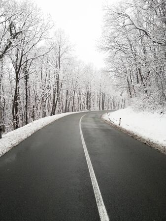 Snow road and forest photo