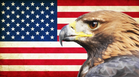 back and forth: United States of America grunge flag and Golden Eagle