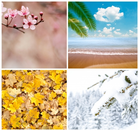 Four season conceptual collage photo