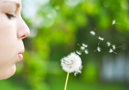 Close up ow woman blowing dandelion flower photo