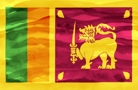 sri: Painted flag of Sri Lanka