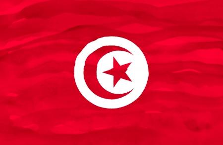 Painted flag of Tunisia photo