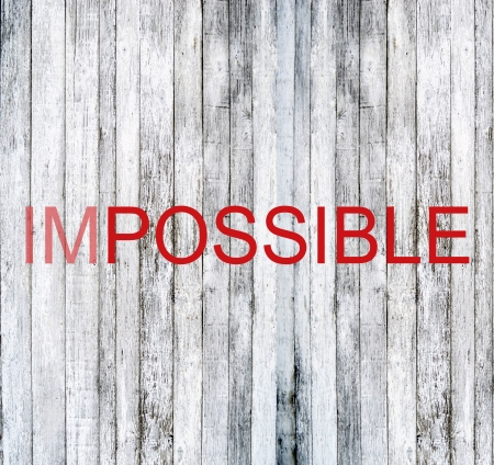 possibility: Possibility concept
