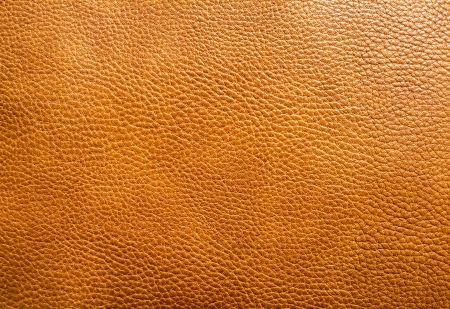 crocodile skin leather: Brown leather texture background Stock Photo