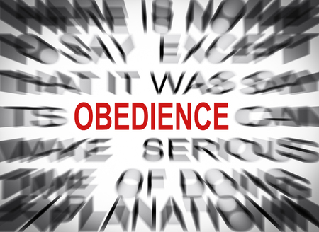 obedience: Blured text with focus on OBEDIENCE Stock Photo