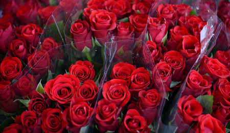 Bouquets of beautiful roses photo