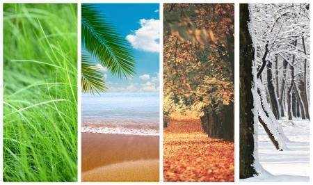 Vier seizoenen collage Stockfoto