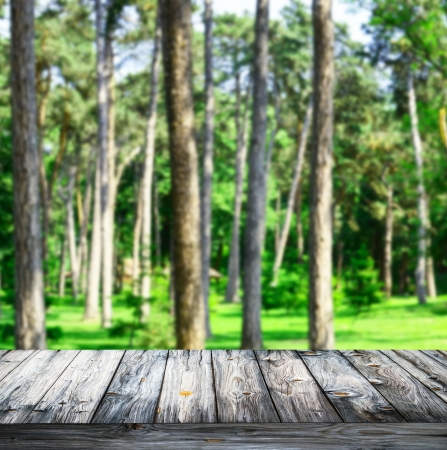 Green forest and wooden planks floor background photo