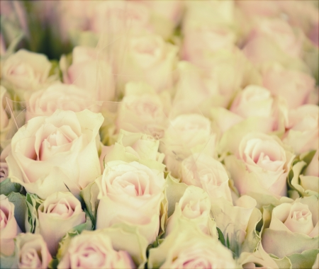 Vintage background of roses in bouquet photo