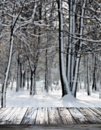 Winter forest and wooden floor photo