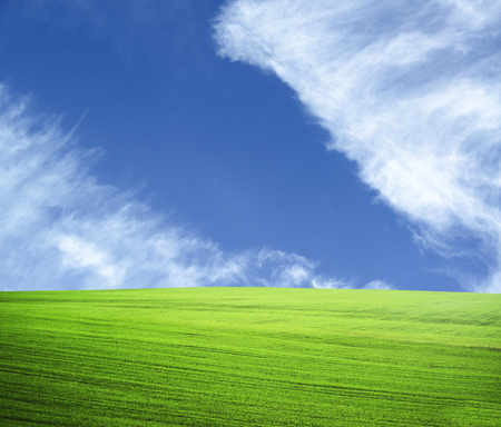 Beautiful green field and blue sky - natural landscape view  photo