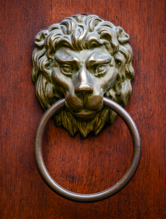 Lion door knocker on wooden door photo