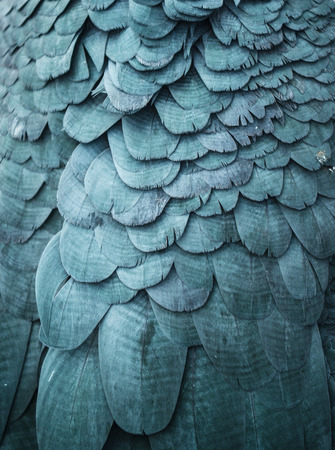 Blue feathers background Stock Photo