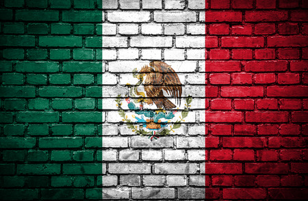 Brick wall with painted flag of Mexico photo