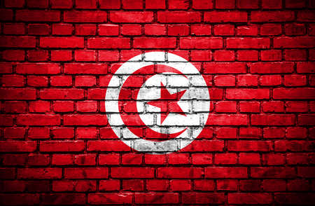 Brick wall with painted flag of Tunisia photo