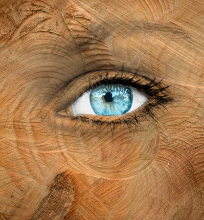 aging concept: Blue human eye with wood texture - Aging concept