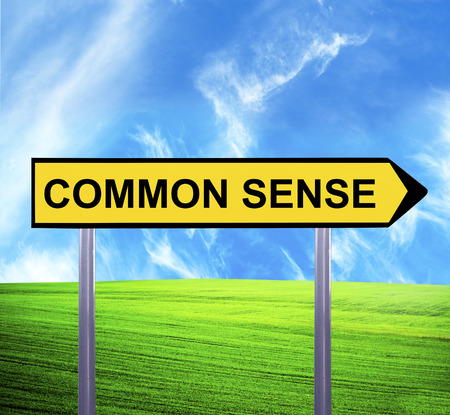 sense: Conceptual arrow sign against beautiful landscape with text - COMMON SENSE