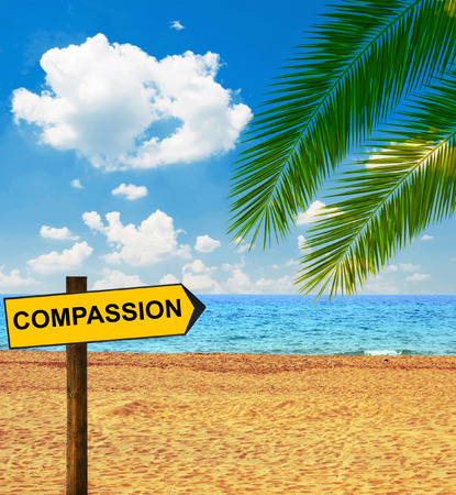 clemency: Tropical beach and direction board saying COMPASSION