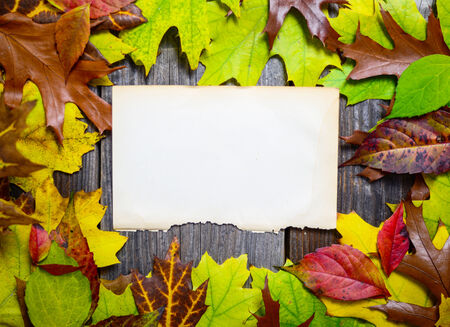 Blank paper on wooden table with autumn leaves photo