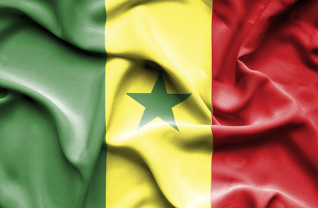 senegal: Senegal waving flag