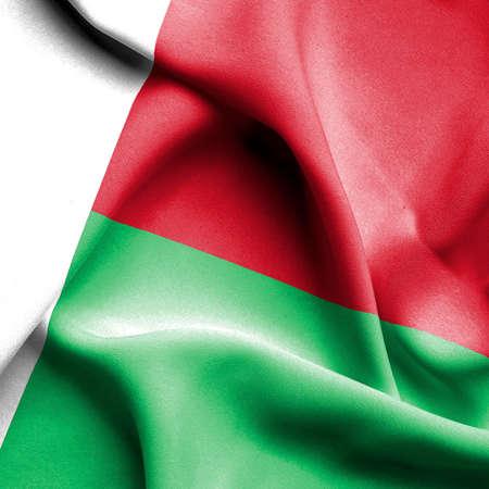 Madagascar waving flag photo