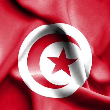 tunisia: Tunisia waving flag