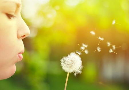 クローズ アップ ow のタンポポの花を吹く女 写真素材