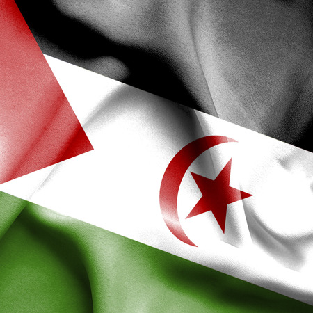 sahara: Western Sahara waving flag Stock Photo