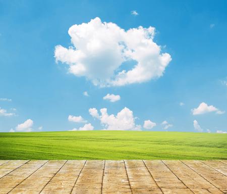 cielo azul: Primavera de la hierba verde fresco con cielo azul y suelo de madera