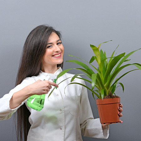 botanist: Portrait of young woman botanist watering plant against gray background Stock Photo