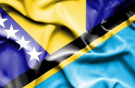 bosnian: Waving flag of Tanzania and Bosnia and Herzegovina