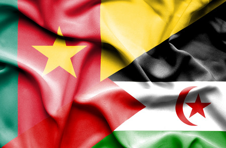 cameroon: Waving flag of Western Sahara and Cameroon