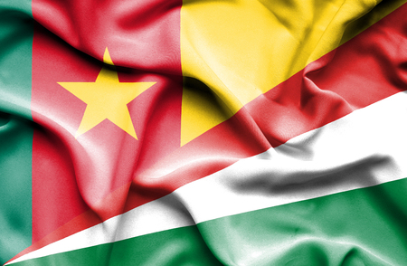cameroonian: Waving flag of Seychelles and Cameroon