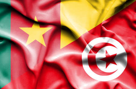 cameroon: Waving flag of Tunisia and Cameroon Stock Photo