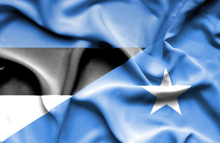 somalian culture: Waving flag of Somalia and Estonia