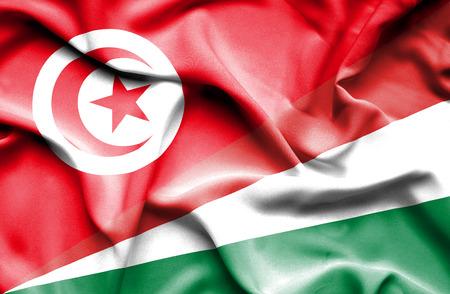 seychelles: Waving flag of Seychelles and Tunisia Stock Photo