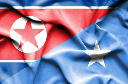 somalian culture: Waving flag of Somalia and North Korea