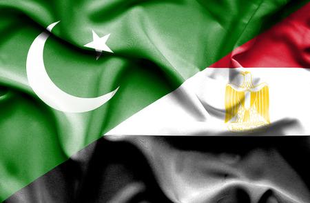 flag of pakistan: Waving flag of Egypt and Pakistan