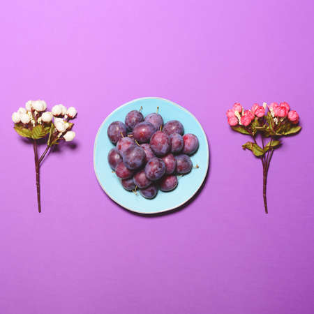 Top view of fresh plums and flowers on lilac background  - Flat lay minimal design Stock Photo