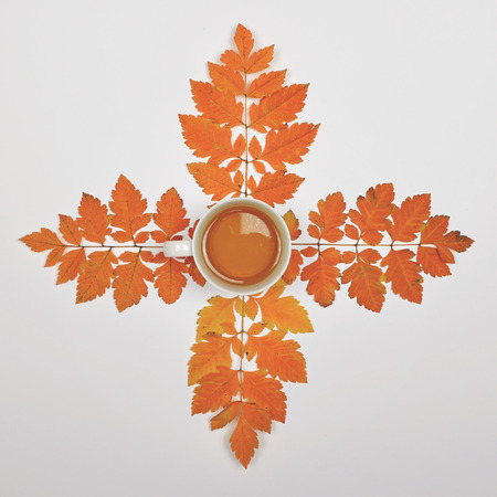 Perfect cup of tea on white background with autumn leaves - Flat lay of Autumnal background