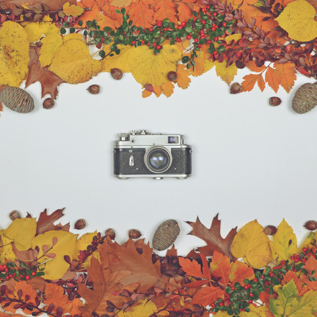 aerial photograph: Autumn leaves cones and acorn on white background with vintage camera in center - Flat lay of Autumnal background