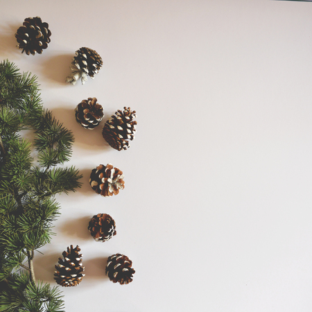 Flat lay of Christmas decorated pincones on white background - Trendy minimal flat lay design