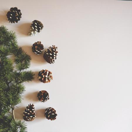 Ploché vánoční zdobené pincones na bílém pozadí - Trendy minimální ploché lay layout