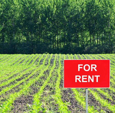 Farm field with FOR RENT sign