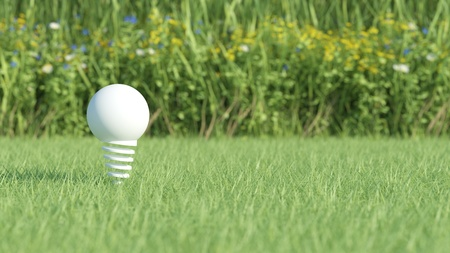 White light bulb on grass field with flowers on background photo