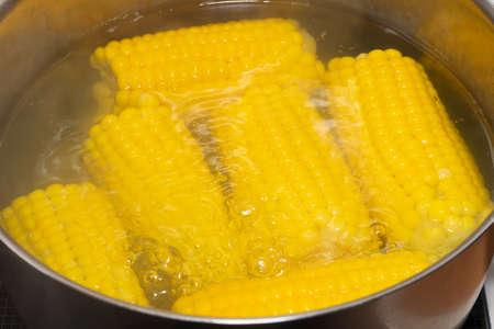 Boiled fresh corn on the cob