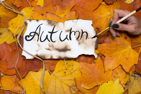 Colorful and bright background of autumn leaves. the inscription is the autumn on parchment parchment written by a womans hand. Autumn concept.
