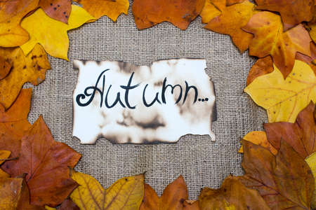 Colorful and bright background, autumn leaves, on sackcloth background. the inscription is the autumn on parchment. Autumn concept. Stock Photo